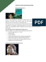 Jenis-jenis Manusia Purba, Persebaran Nenek Moyang Bangsa Indonesia, Corak Kehidupan Manusia Pra Aksara