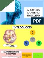IV Nervio Craneal (1)