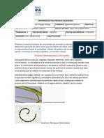 Antropologia Cristiana Evolucion Villegas a. G28