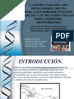 Articulo ADN 1..ppt