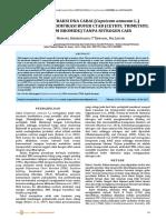423-1390-2-PB.pdf