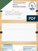 1 Urticaria y Angioedema