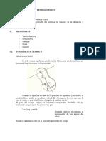 Laboratorio 2 - Pendulo Fisico y Teorema de Steiner