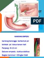 Terapi Diet Kandung Empedu( 2018)