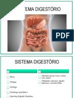 07. Sistema Digestório