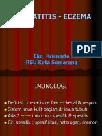 Dermatitis 20011