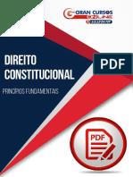 1201050-principios-fundamentais.pdf