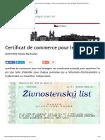 Certificat de Commerce Pour Les Étrangers - Licence Commerciale Pour Les Étrangers Résidant InfoCizinci