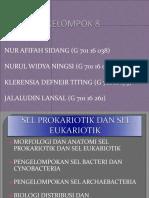Kelompok 8 Sel Prokairotik Dan Sel Eukariotik