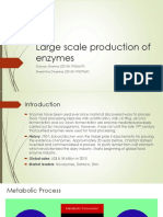 Large Scale Production of Enzymes_Gaurav_Shrestha.pptx