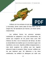 anfibios.pdf