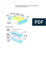 Bioquímica Electroforesis