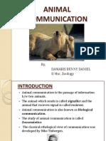 animalcommuni-131009191418-phpapp01