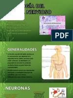 Histología-del-sistema-nervioso.pptx