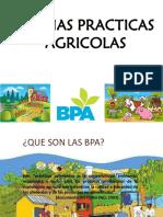 exposición BPA