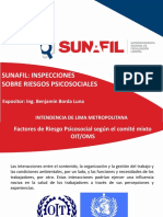 Seminario-Sunafil-Inspecciones-sobre-riesgos-psicosociales.pdf