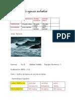 Investigación Fuentes de agua.docx