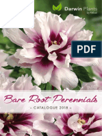 catalog flori vol1