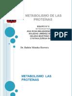 expo_de_tema_9_metabolismo