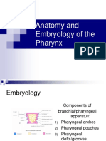 Anatomy and Embryology of the Pharynx1
