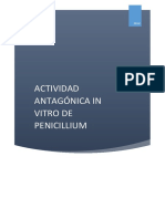 actividad antagonica penicillium