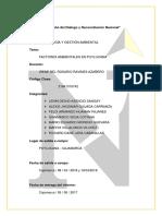 TECNOLOGÍA-Y-GESTIÓN-AMBIENTAL-PUYLUCANA-1.docx