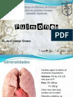 pulmones-131220170341-phpapp01