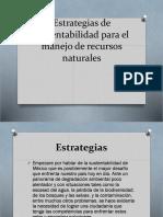 Estrategias de Sustentabilidad Para El