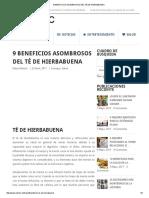 9 BENEFICIOS ASOMBROSOS DEL TÉ DE HIERBABUENA.pdf