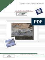 pm_caolin_2014.pdf