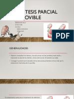 Generalidades Ppr