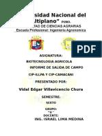 DIA DE CAMPter.docx
