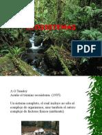 X. Ecosistemas