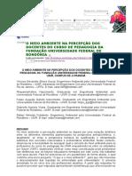 [Artigo] - o Meio Ambiente Na Percepção Dos Docentes Do Curso de Pedagogia Da Fundação Universidade Federal de Rondônia