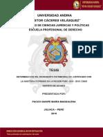 40517506.pdf