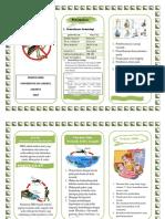 Leaflet Dbd s