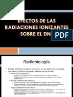 Efecto de Las Radiaciones Sobre El DNA