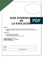 Guía Evidencia Evolucion IIIº