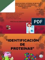 Proteínas Equipo 1 258a