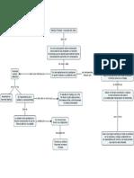 Mapa conceptual-Juan Carlos Cabarcas.pdf