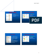 Knee Joint PDF