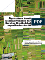 Livro Agricultura Familiar NEDETs eBook