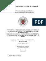 ONTOGENIA Y FILOGENIA DEL MODELADO OSEO EN ESQUELETO FACIAL.pdf