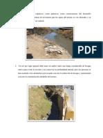 Contaminación Río