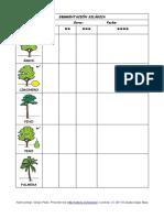 Segmentacion silabica vocabulario verano.pdf