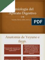 Semiología Del Aparato Digestivo