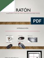 Raton Pp