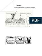 ARSURILE-docx