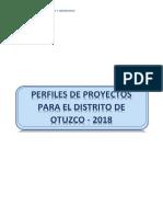 perfil seguridad ciudadana.docx