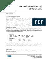 12 Un Microorganismo Industrial